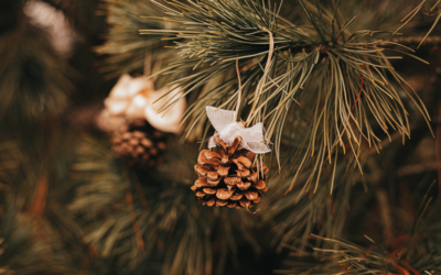 Bricolages anti-gaspi de Noël